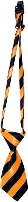 Scoobee Tie for Dog(orange)