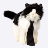 Petriot Bow Tie for Cat (Black, White)