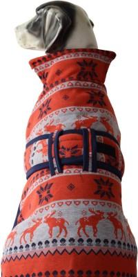 Pawzone Coat for Dog