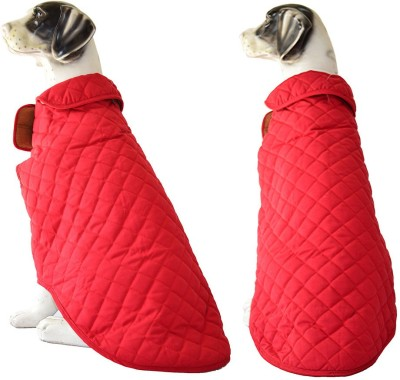 Pawzone Coat for Dog