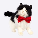 Petriot Bow for Cat (Red)