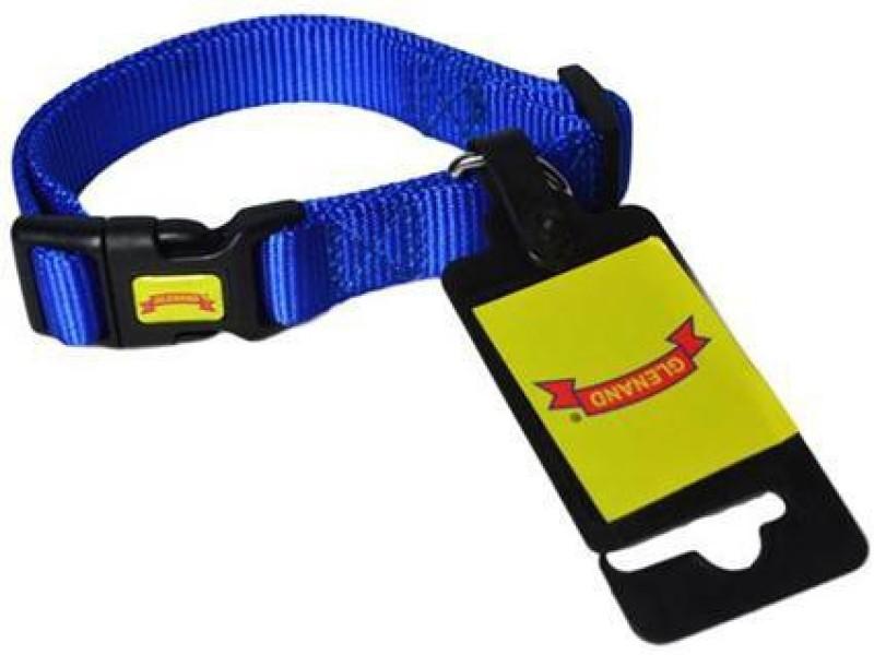 Glenand Clip Midium Plain Dog Collar Charm(Blue)