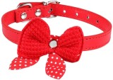 Futaba 421 Red Collar Embellished Dog Co...