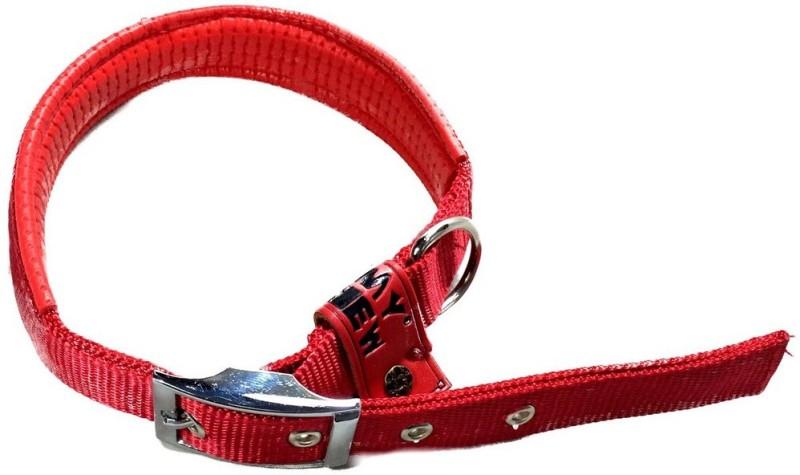TommyChew Plain Dog Collar Charm(Red, Round)