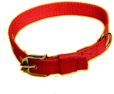 Scoobee Dog Everyday Collar(Medium, Scoobee Red)