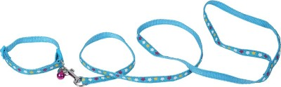 TommyChew Showoff Dog Everyday Collar(Extra Small, Blue)