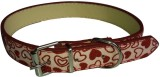 Pets Planet Dog Show Collar (Small, Red)