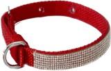 Pawzone Dog Show Collar (Medium, Red)