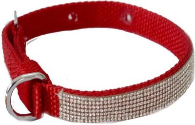 Pawzone Dog Show Collar