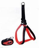 Petshop7 Nylon Black & Red 0.75 inch pad...