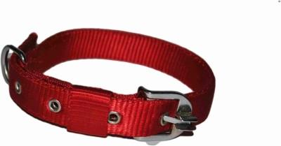 Petwell Dog Everyday Collar(Medium, Red)