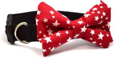 That Dog In Tuxedo The Twinkle Star Bow Tie - M-L Dog Show Collar