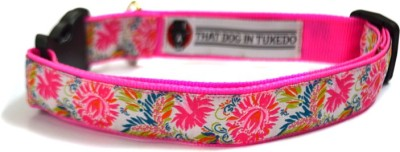 That Dog In Tuxedo The Flower Exotica Dog Everyday Collar
