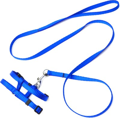 XPO Stunning Blue Small Breed Dog Harness & Leash