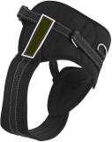 Futaba Dog Standard Harness (Large, Blac...