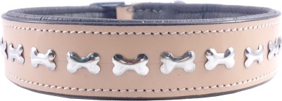 Bone Lover ComFort Line Dog Everyday Collar