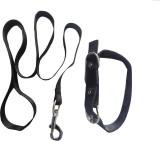 Suraj Chains Dog Collar & Leash (Extra L...