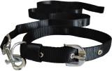 Pawzone Dog Collar & Leash (Extra Large,...