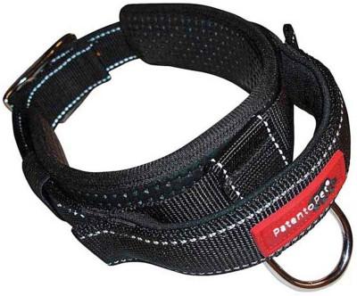 Patento Pet Control Collar Dog Show Collar