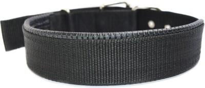 XPO Black Nylon Padded Large Dog Everyday Collar