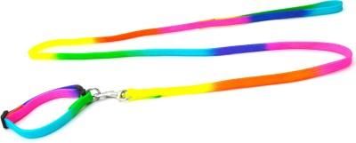 XPO Fashionable Rainbow Dog Collar & Leash