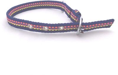 Scoobee Dog Everyday Collar