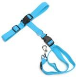Futaba Dog Collar & Chain (Large, Blue)