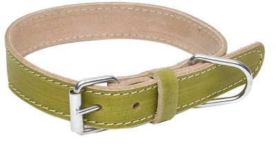 Hawai Attractive Strong Dog Everyday Collar