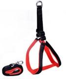 Pawzone Dog Training Harness (Small, Bla...