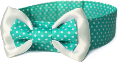 That Dog In Tuxedo Green Apple Bow Tie Dog Show Collar