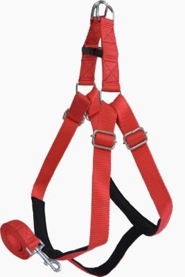 Pawzone Dog Harness & Leash