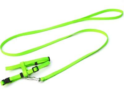 XPO Stunning Green Small Breed Dog Harness & Leash