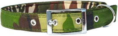 XPO Green Printed Medium Dog Everyday Collar