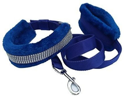 Bow Wow Dog Collar & Leash