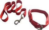 Suraj Chains Dog Collar & Leash (Extra S...