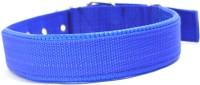 XPO Blue Nylon Padded Large Dog Everyday Collar(Large, Blue)