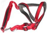 Pawzone Dog Training Harness (Medium, Re...