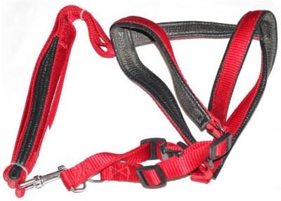 Pawzone Dog Training Harness