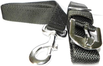 Smarty Pet Control Collar Dog Everyday Collar