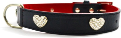 That Dog In Tuxedo The King,S Love Dog Everyday Collar