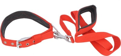 Wonder Wish Dog Collar & Leash