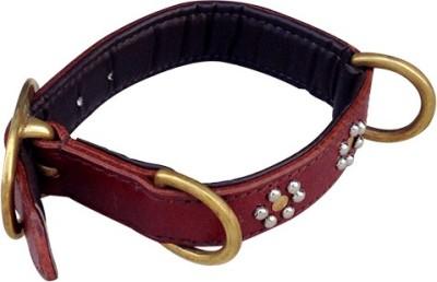Pet Lovers Nz Flower Stud Collar Dog Everyday Collar