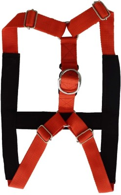 Pawzone Dog Safety Harness