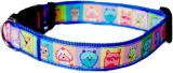 Heads Up For Tails Dog Everyday Collar (...