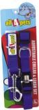 All4pets Dog Collar & Leash (Large, Blue...