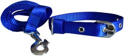 Pawzone Dog Collar & Leash