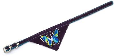 XPO Velvet Butterfly Printed Bandana Dog Show Collar