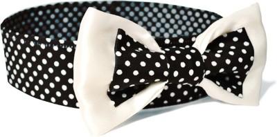 That Dog In Tuxedo The 70's Polka Dog Bowtie -M Dog Show Collar
