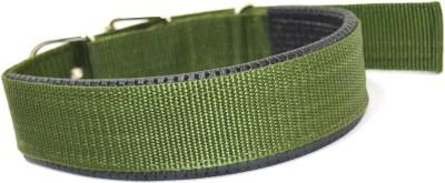 XPO Green Nylon Padded Large Dog Everyday Collar
