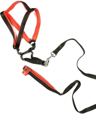 Tommychew Premia Dog Safety Harness